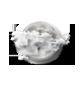 Eclaircies et passages nuageux parfois denses.